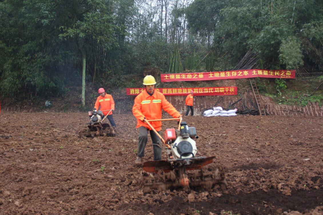 江安县南北二乡增减挂钩项目区-大路村土壤修复项目示范区域