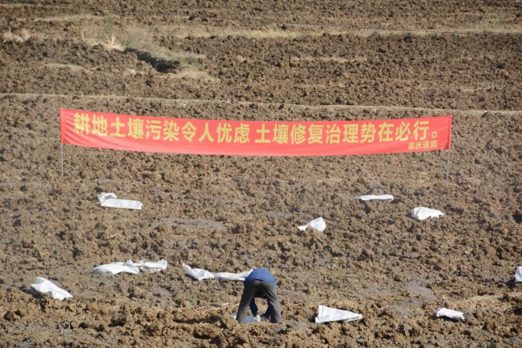 德昌县巴洞供港果蔬基地土壤修复项目